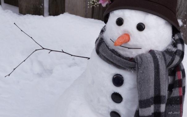 snowman-2017-jan-12-1
