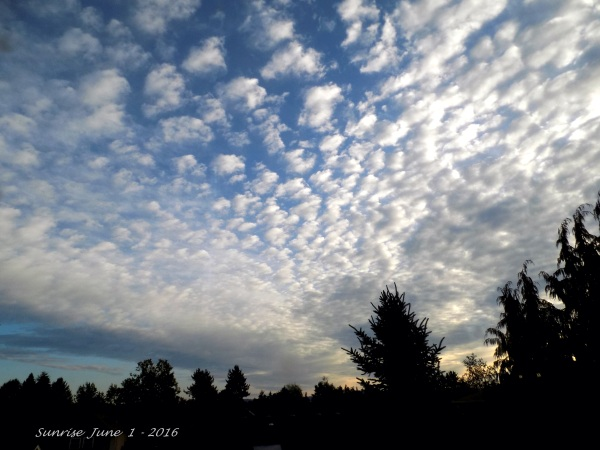 Sunrise, June 1 - 2016 mh