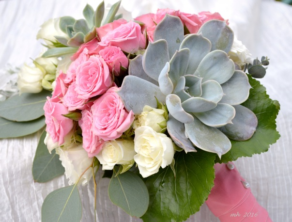 Hoa Sen đá  .  (1)