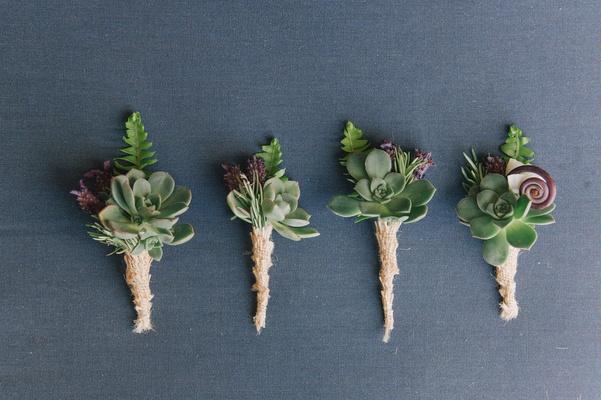 Succulents (2a) (13)