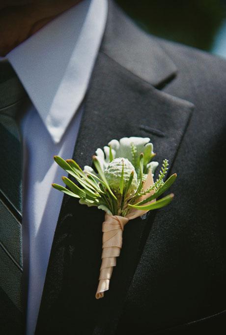 Succulents  (2a) (2)