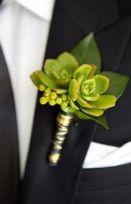 Succulents (2a) (5)