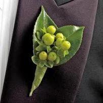 Succulents (2a) (6)