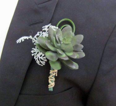 Succulents (2a) (9)