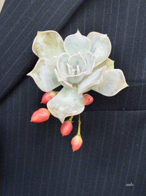 Succulents mint gray -2