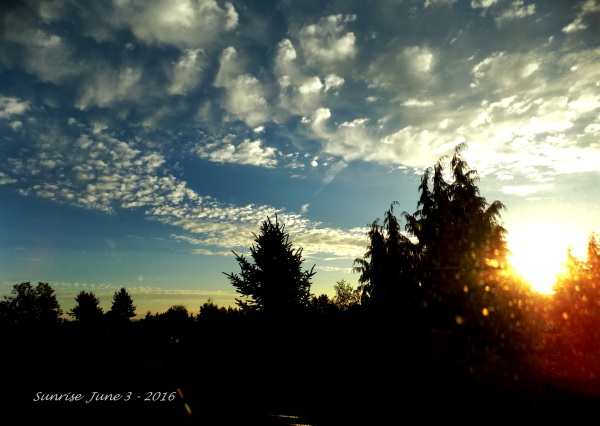 Sunrise June 3 - 2016-5 - A