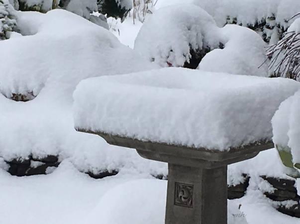 january-2017s-snow-sm-6