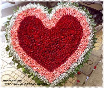 Hoa hồng 1001