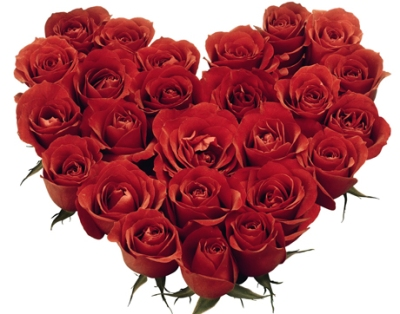 Hoa hồng tặng sinh nhật đẹp