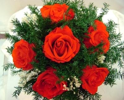 6 bông hoa hồng
