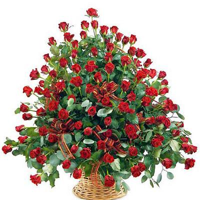 Hoa sinh nhật cao quý