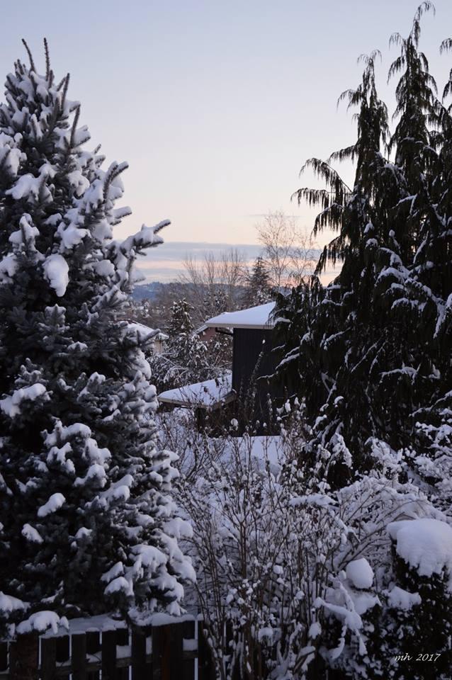 snow-2017-chup-duoc-tu-o-cua-noi-ban-viet-2