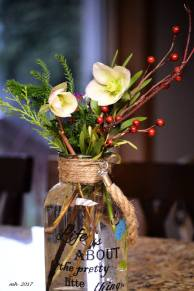 christmas-rose-helleborus-2017-sm2
