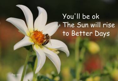 You will be ok (sm)
