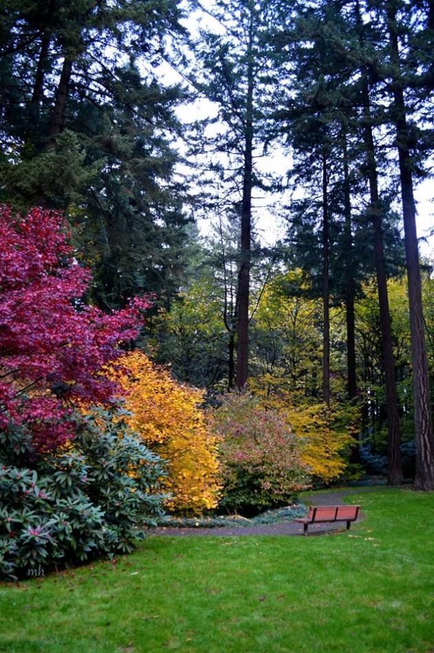 Khung cảnh mùa thu at The Grotto, Portland -sm 4 -