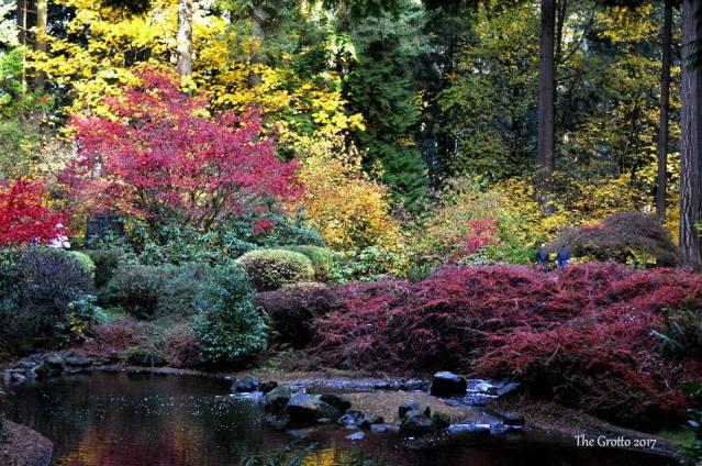 The Grotto's Autumn 2017 (sm 1 )