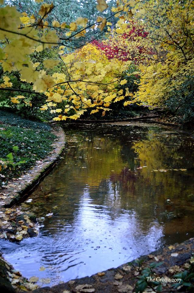 The Grotto's Autumn 2017 -sm 2 -