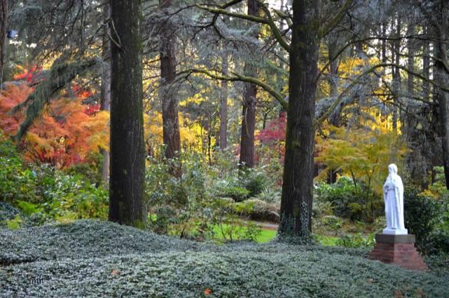 The Grotto's Autumn 2017 (sm 5 )