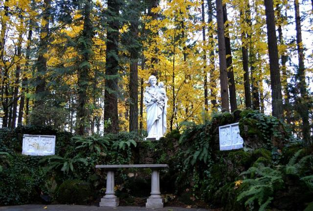 The Grotto's Autumn 2017 (sm 9 )
