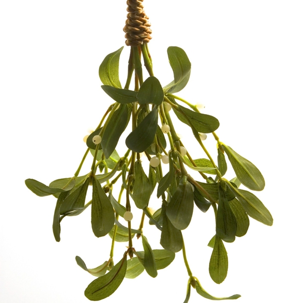 sprig-of-mistletoe-Meaning- Love and affection